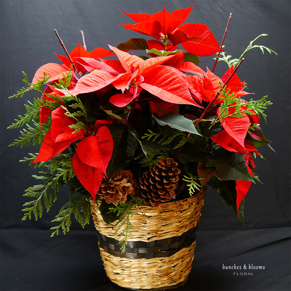 Holiday Floral Suggestions